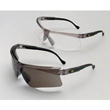 249-7265 Safety Glasses