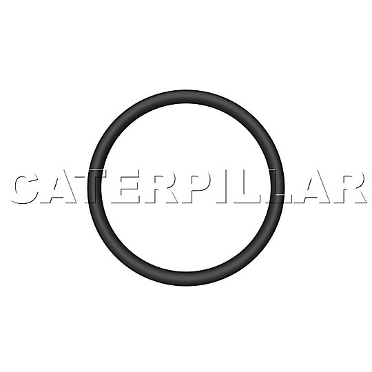 205-9024: Ring-Toric