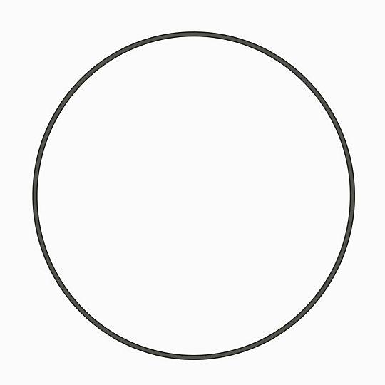 1U-1770: Ring