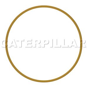 294-9507: 支承环