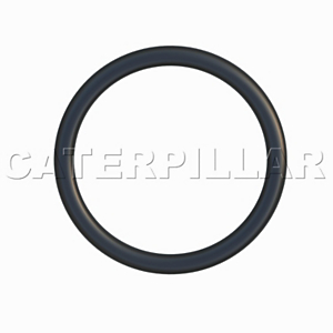 113-5304: O-ring
