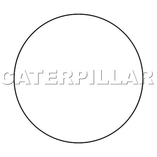 295-9234: O-Ring