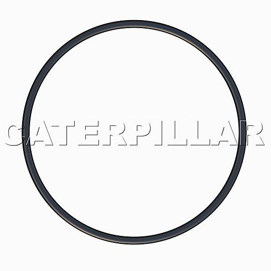 107-5769: O-Ring
