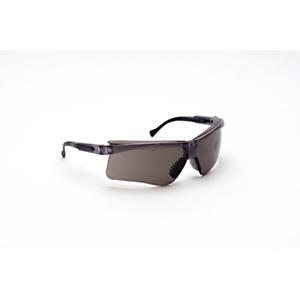 233-8579: Safety Glasses
