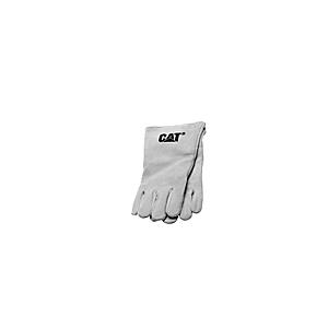 247-6410: ASS; GANT
