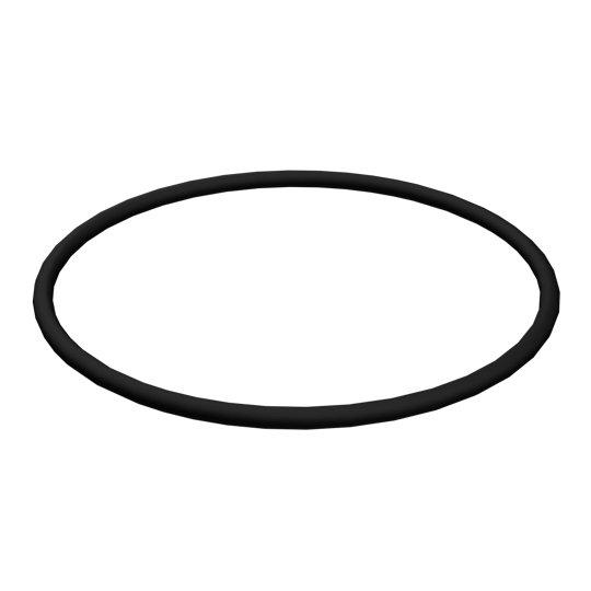 5P-1979: O-Ring