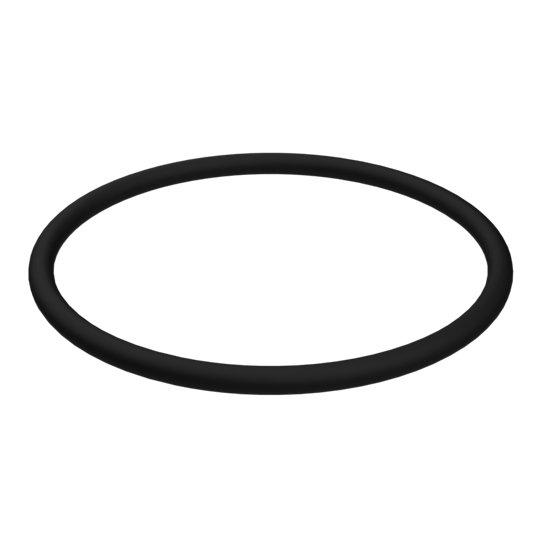 095-1663: O-Ring