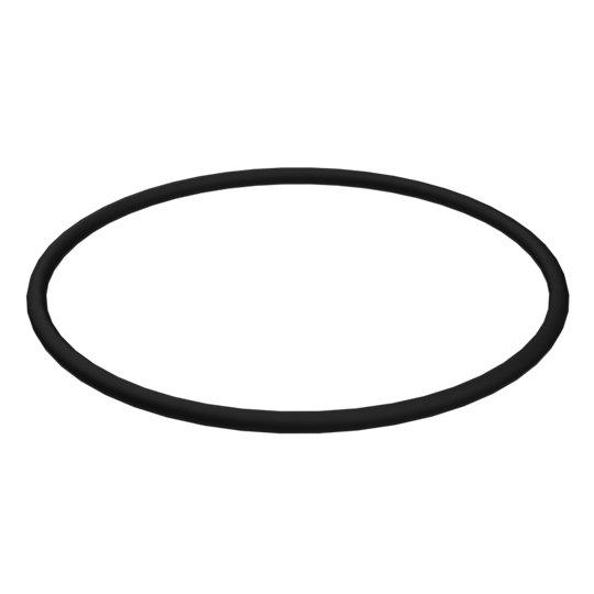 095-1710: O-Ring
