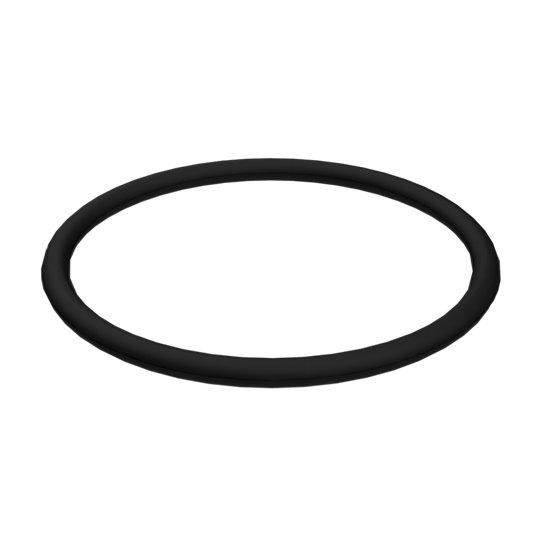 219-7000: O-Ring