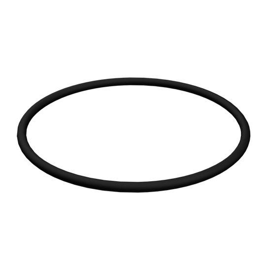 2H-6124: O-Ring