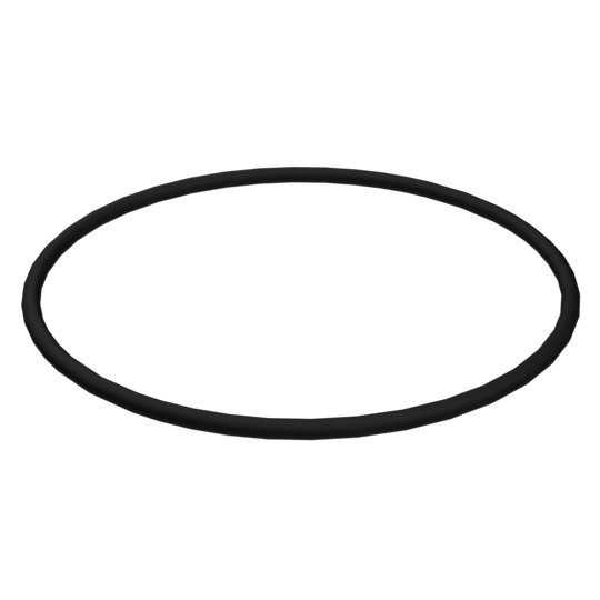 6V-5055: O-Ring