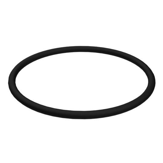 3D-2898: O-Ring