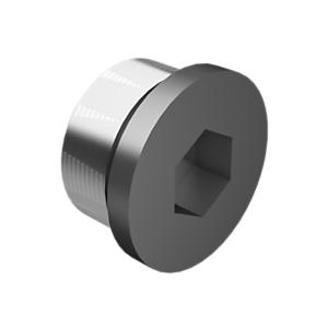 9S-8009: 直螺纹 O 形密封圈 - 六角驱动螺塞